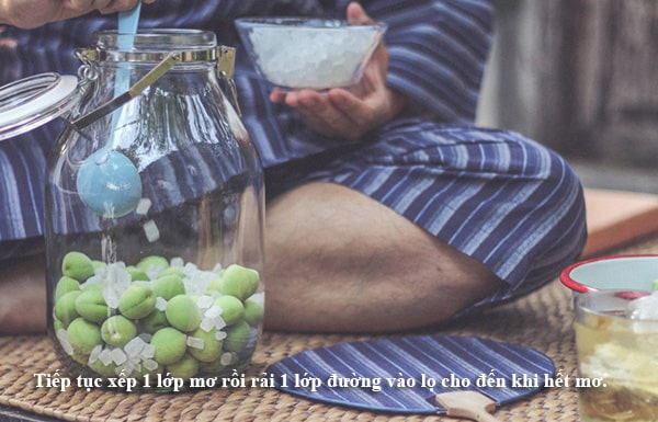 Mách nhỏ cách làm rượu mơ Choya của người Nhật Bản2