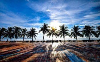 Bãi biển Mỹ Khê Đà Nẵng 2019 thông tin hình ảnh đầy đủ